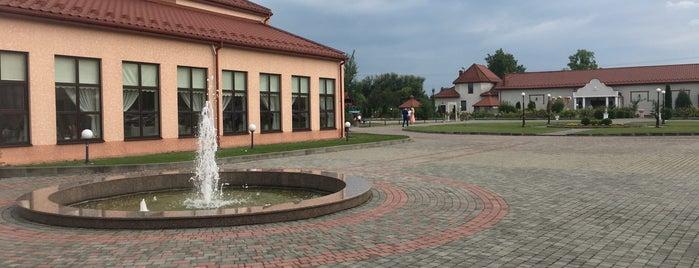 Підгорецький маєток is one of Kristieさんのお気に入りスポット.