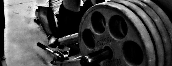 Platinum Fitness is one of Tempat yang Disukai Константин.