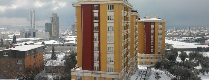 Serra Park Evleri is one of dostlardan tavsiyeler :).