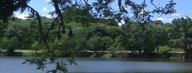 Parque Portugal - Lagoa do Taquaral is one of Turismo em Campinas.