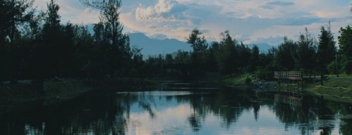 Pipa Lake is one of Taitung 台東.