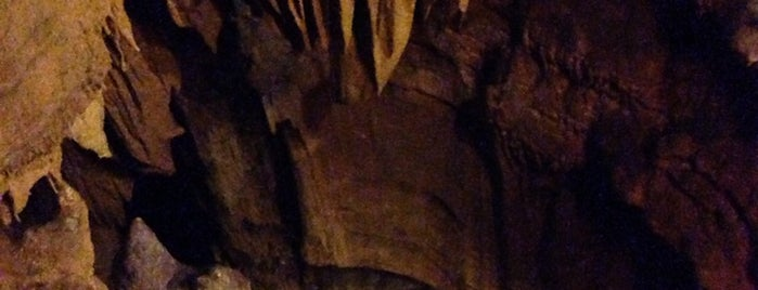 Parc National de Mammoth Cave is one of National Recreation Areas.