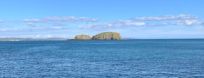 Ballintoy Harbour is one of Carlo 님이 좋아한 장소.