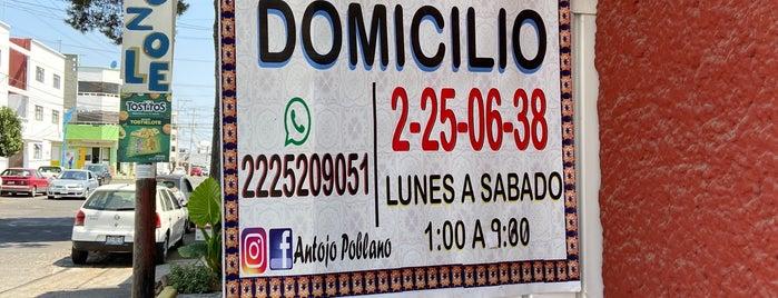 Antojo Poblano is one of Puebla.