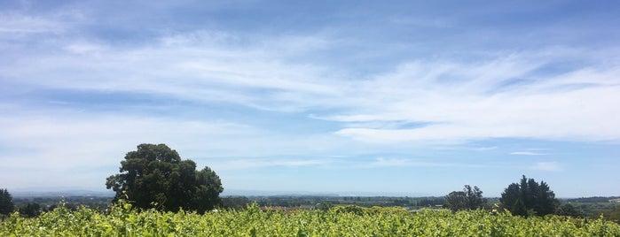 Black Barn Vineyards is one of NZL.