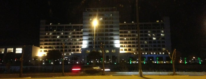 The Green Park Pendik Hotel & Convention Center is one of Pendik.