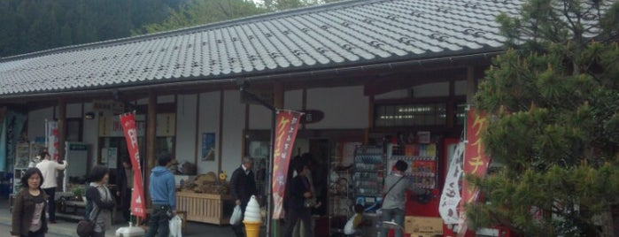 道の駅 白山文化の里長滝 is one of Lugares favoritos de 高井.