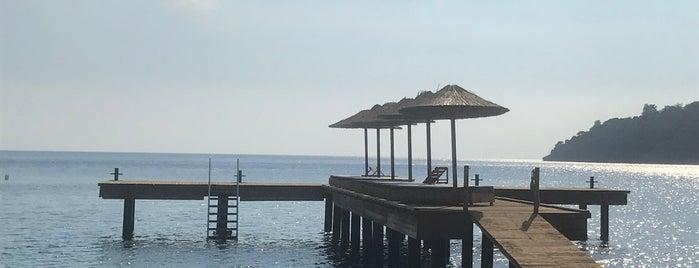 Kargıcak Bay is one of Deniz : понравившиеся места.