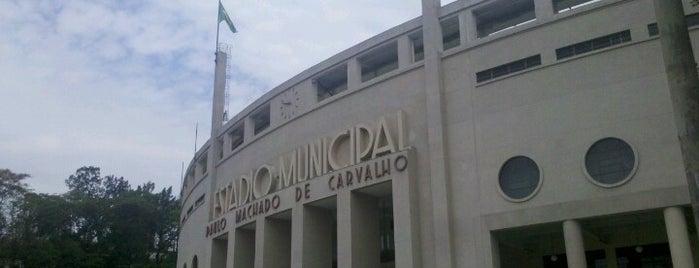 Estádio Municipal Paulo Machado de Carvalho (Pacaembu) is one of Aqui na terra tão jogando futebol.