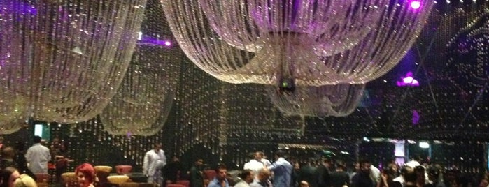 Cavalli Club is one of Dubai's very best Places = P.Favs.