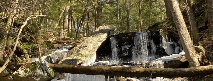 Day Pond State Park is one of My state parks to visit.