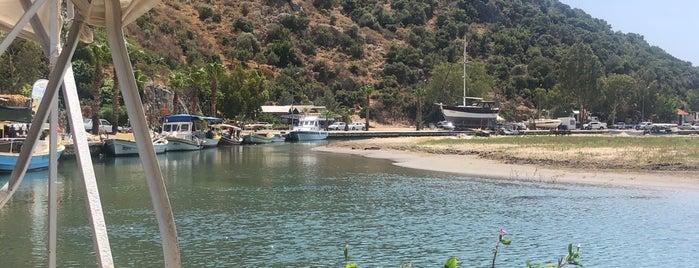 Çayağzı Tekne Limanı is one of Kaş & Kalkan.