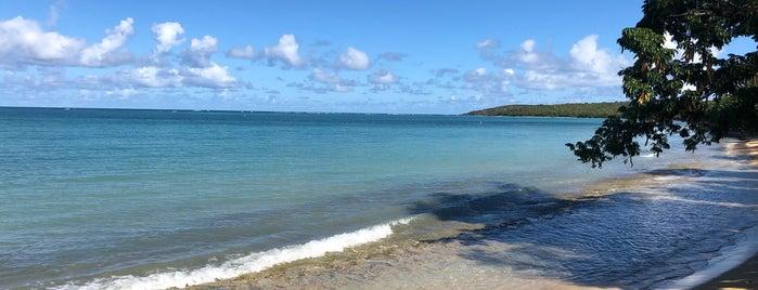 Seven Seas is one of Locais curtidos por Nikunj.