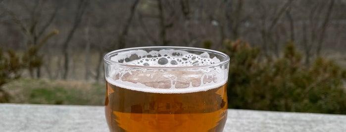 Yazoo Brewing Company is one of Posti che sono piaciuti a Dick.