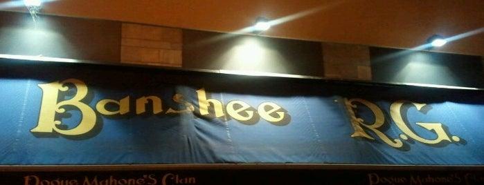 Banshee R.G. is one of Pub & Birrifici.