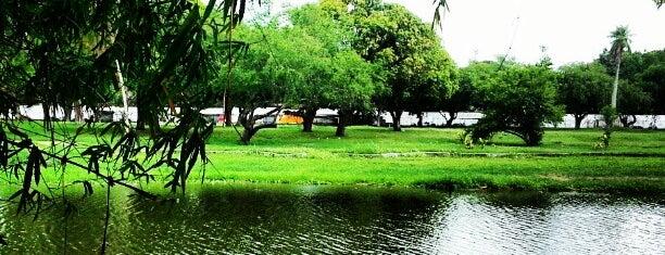 UFPE - Universidade Federal de Pernambuco is one of Neilson 님이 좋아한 장소.