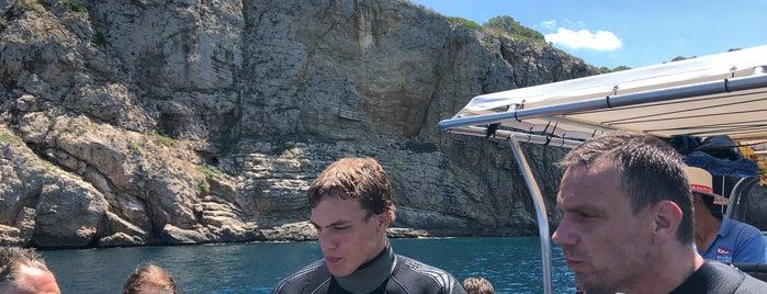 Cala Viuda (scuba diving) is one of Diving sites Costa Brava.