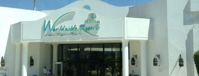 Hilton Sharm Dreams Resort is one of Apnea'nın Beğendiği Mekanlar.