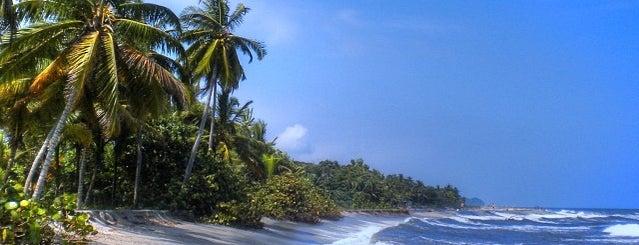 Costeño Beach Surf Camp is one of Posti che sono piaciuti a lupas.