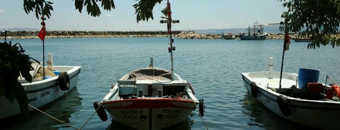Tatlısu Aile Çay Bahçesi is one of Posti che sono piaciuti a Oral.