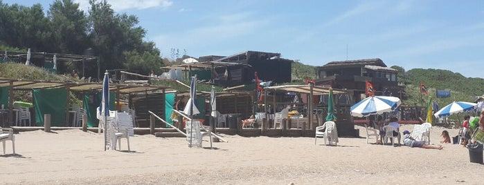 Playa Rilanco is one of สถานที่ที่ Ludmila ถูกใจ.