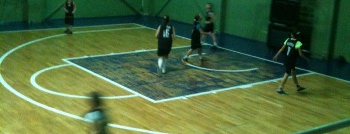 Bakirkoy Spor Vakfi Basketbol Salonu is one of Güray'ın Kaydettiği Mekanlar.