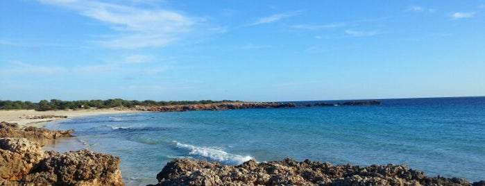 Playa de Son Xoriguer is one of Minorca.