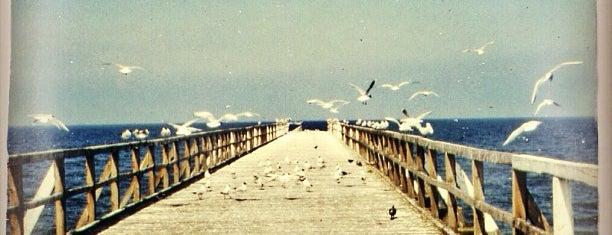 Międzyzdroje is one of Moog's Liked Places.