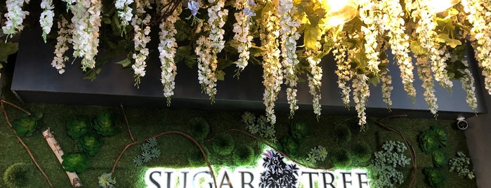 Sugar Tree Cafe is one of NJ.