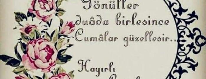 MARİBA is one of สถานที่ที่บันทึกไว้ของ Emre.