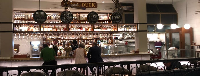 Black Duck Bar is one of New Orleans.