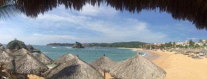Baracuda Beach Bar is one of Lieux qui ont plu à Jesús Ernesto.