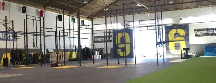 CrossFit Alc is one of Spain + Islands.
