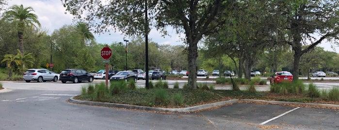 Animal Kingdom Lodge Parking Lot is one of #DAKL.