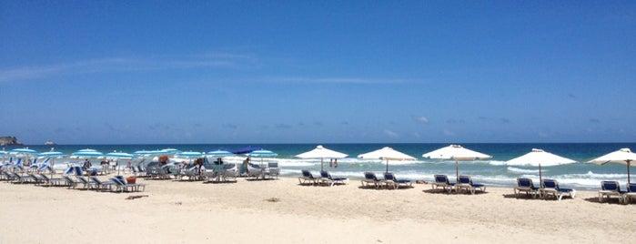 Playa El Agua is one of Massiel'in Beğendiği Mekanlar.