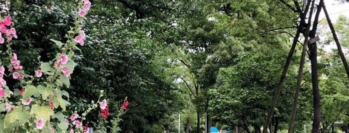 Hanakawado Park is one of 神輿で訪れた場所-1.