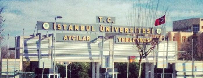 İstanbul Üniversitesi is one of Orte, die Özge gefallen.