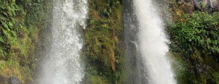 Dawson Falls is one of Orte, die Marc gefallen.