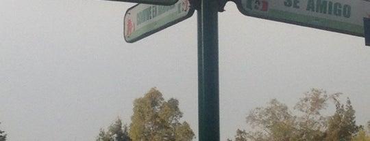 Orte, die René gefallen