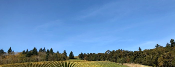 Cristom Vineyards is one of Oregon Wine Country.