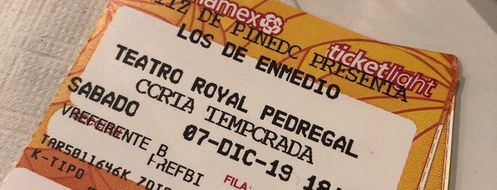 Teatro Royal Pedregal is one of สถานที่ที่ Adrian ถูกใจ.