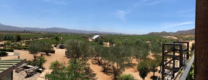 La Carrodilla is one of Lugares favoritos de Yanira.