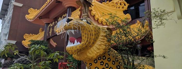Temple Of 1000 Lights (Sakya Muni Buddha Gaya Temple) is one of Activities in Singapore.