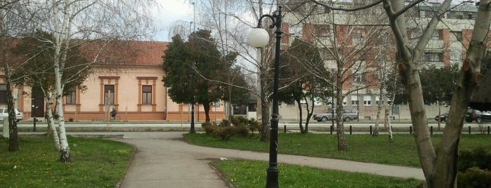 Stara Pazova is one of +381642216944#.