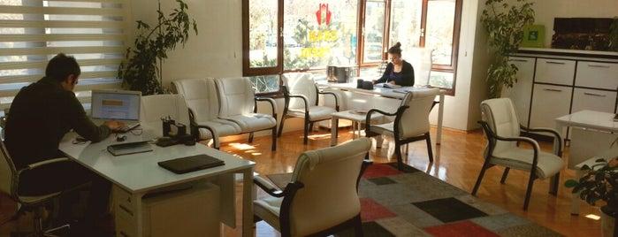 Egado Real Estate Consultancy is one of Real Estate Agency'in Beğendiği Mekanlar.