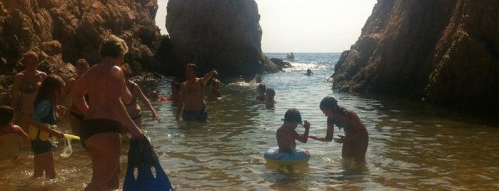 Platja Banyera de Ses Dones is one of Playas de España: Cataluña.