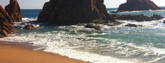 Platja de Mar Menuda is one of Playas de España: Cataluña.
