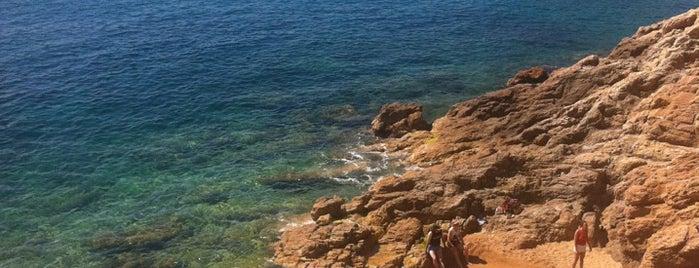 Platja del Reig is one of Playas de España: Cataluña.