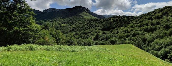 PN Picos de Europa -Leon is one of Tempat yang Disukai María.