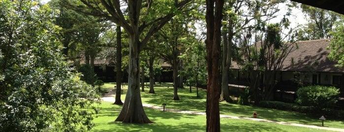 Safari Park Hotel is one of Emilio'nun Kaydettiği Mekanlar.